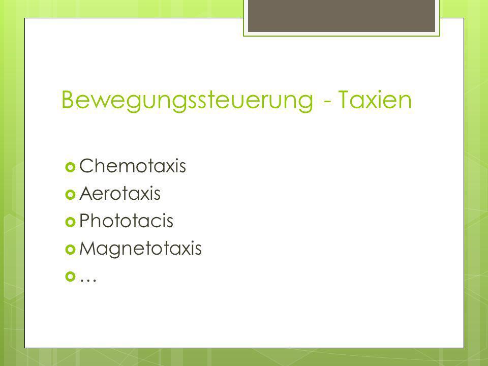 Bewegungssteuerung - Taxien  Chemotaxis  Aerotaxis  Phototacis  Magnetotaxis  …