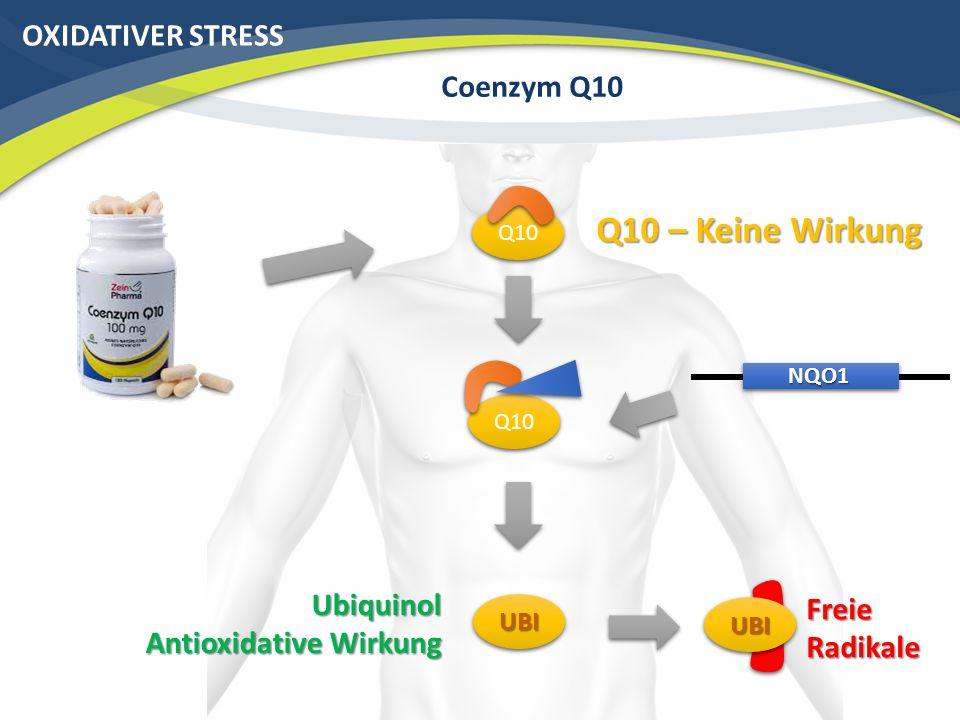 OXIDATIVER STRESS Coenzym Q10 Q10 NQO1 UBIUBI Freie Radikale Q10 – Keine Wirkung Ubiquinol Antioxidative Wirkung UBIUBI