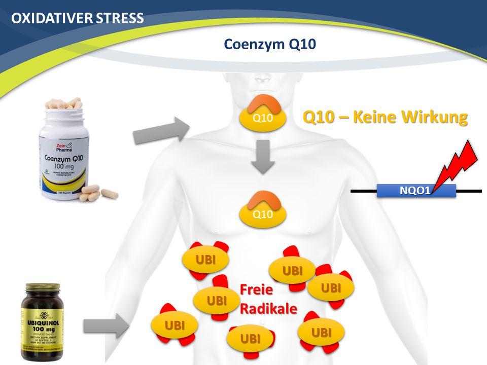 OXIDATIVER STRESS Coenzym Q10 Q10 NQO1 Freie Radikale Q10 – Keine Wirkung Q10 UBIUBI UBIUBI UBIUBI UBIUBI UBIUBI UBIUBI UBIUBI
