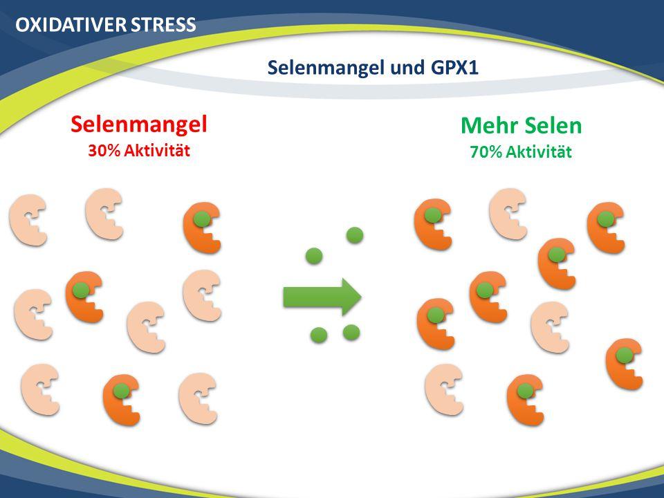 OXIDATIVER STRESS Selenmangel und GPX1 Selenmangel 30% Aktivität Mehr Selen 70% Aktivität