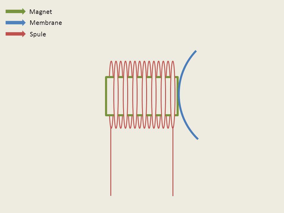 Magnet Spule Membrane