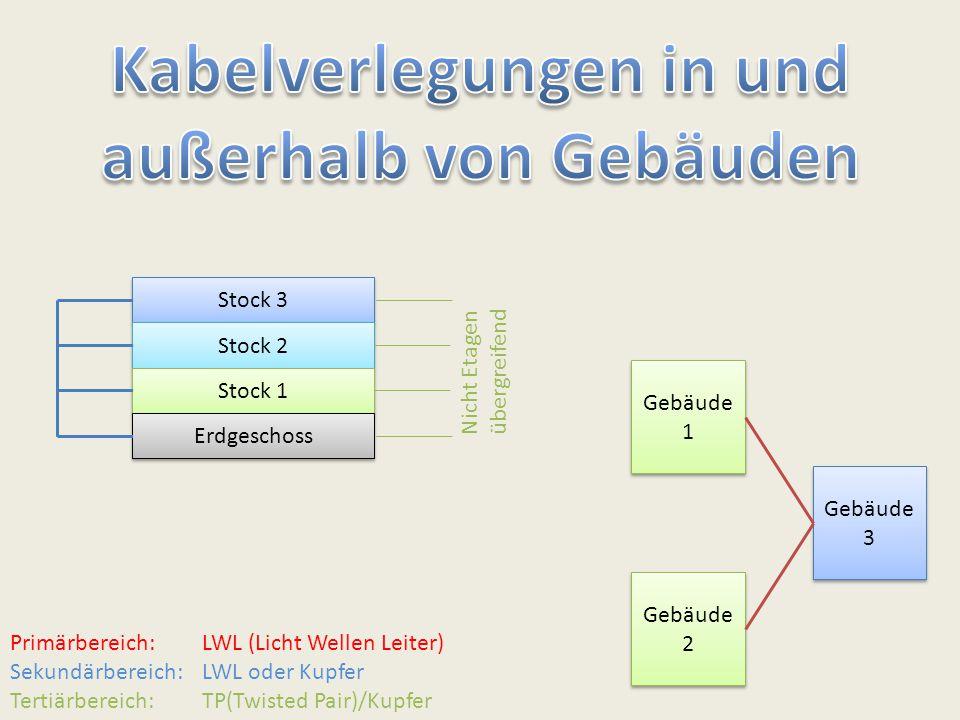 """Jetzt hat uns das Programm """"nslookup die Adresse von google.de ausgegeben."""