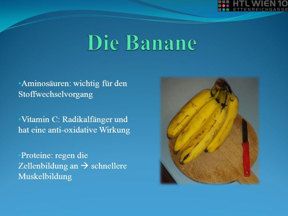 Aminosäuren: wichtig für den Stoffwechselvorgang Vitamin C: Radikalfänger und hat eine anti-oxidative Wirkung Proteine: regen die Zellenbildung an  s