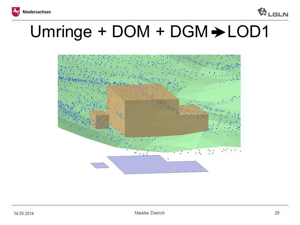 Mareike Dietrich29 Umringe + DOM + DGM LOD1 14.05.2014