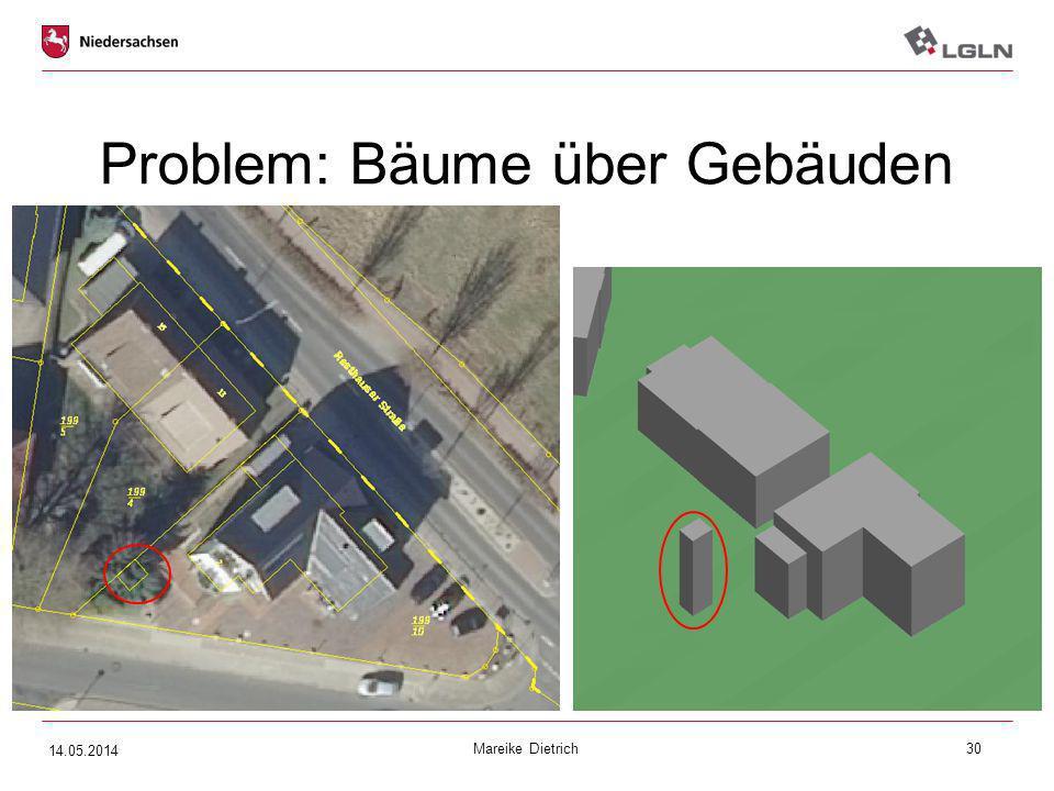 Mareike Dietrich30 Problem: Bäume über Gebäuden 14.05.2014