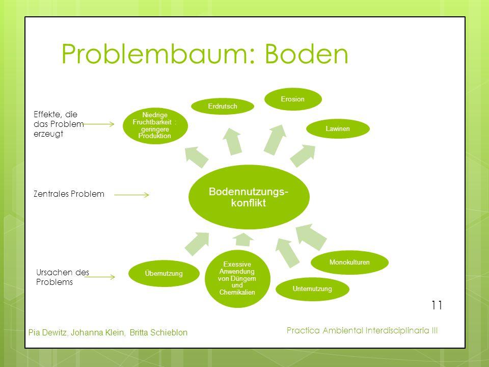 Pia Dewitz, Johanna Klein, Britta Schieblon Practica Ambiental Interdisciplinaria III Problembaum: Boden Bodennutzungs- konflikt Niedrige Fruchtbarkei