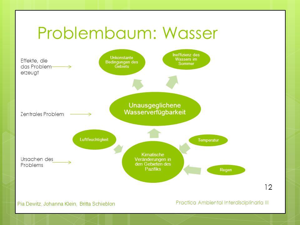 Pia Dewitz, Johanna Klein, Britta Schieblon Practica Ambiental Interdisciplinaria III Problembaum: Wasser Unausgeglichene Wasserverfügbarkeit Unkonsta