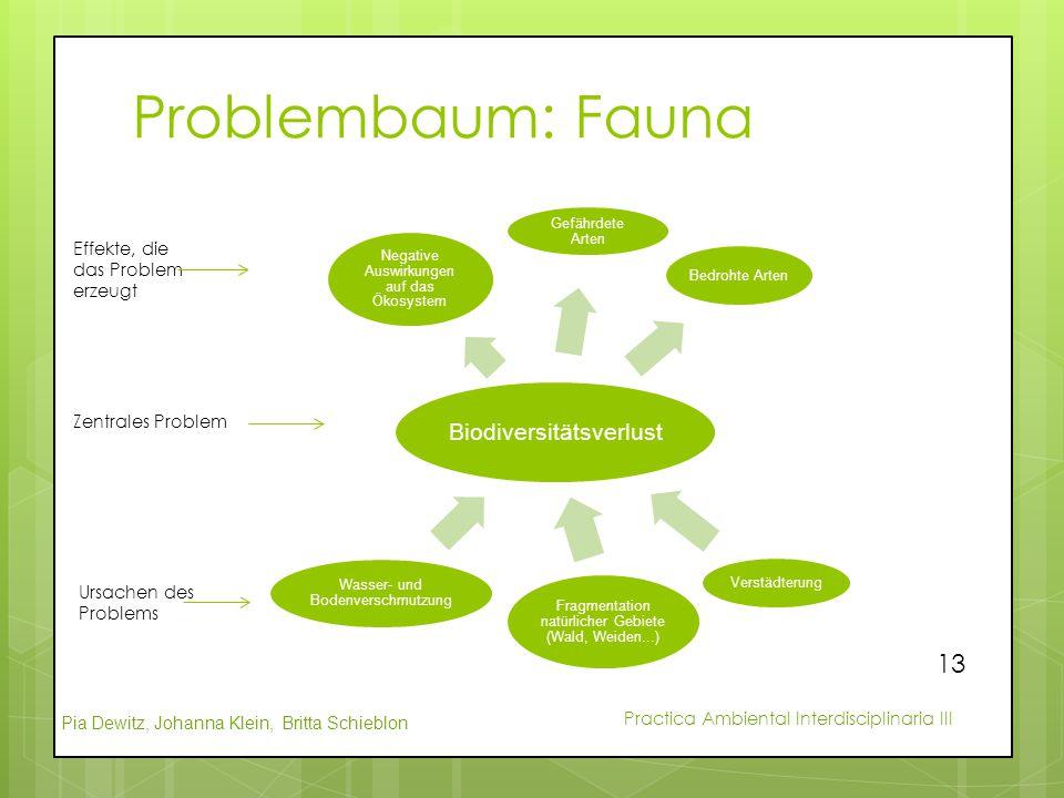 Pia Dewitz, Johanna Klein, Britta Schieblon Practica Ambiental Interdisciplinaria III Problembaum: Fauna Biodiversitätsverlust Negative Auswirkungen a