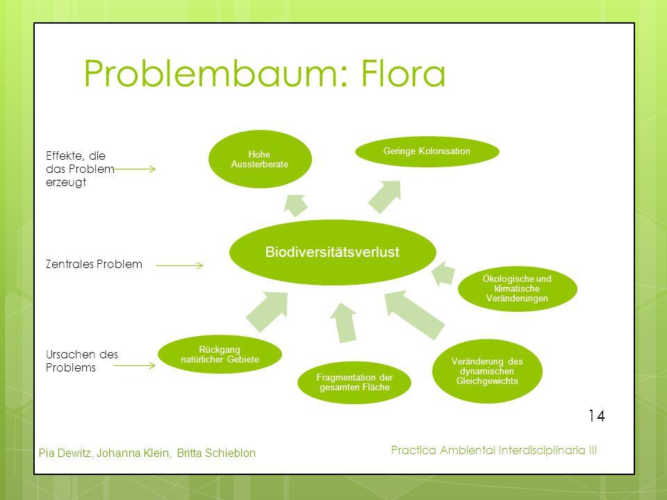 Pia Dewitz, Johanna Klein, Britta Schieblon Practica Ambiental Interdisciplinaria III Problembaum: Flora Biodiversitätsverlust Hohe Aussterberate Geri