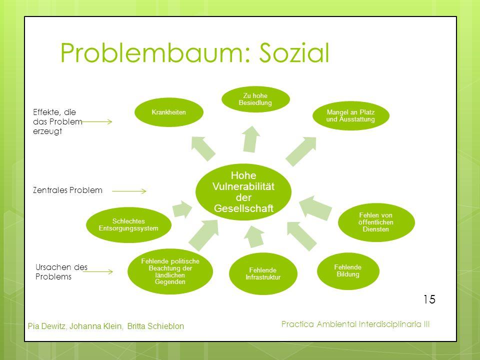 Pia Dewitz, Johanna Klein, Britta Schieblon Practica Ambiental Interdisciplinaria III Problembaum: Sozial Hohe Vulnerabilität der Gesellschaft Schlech