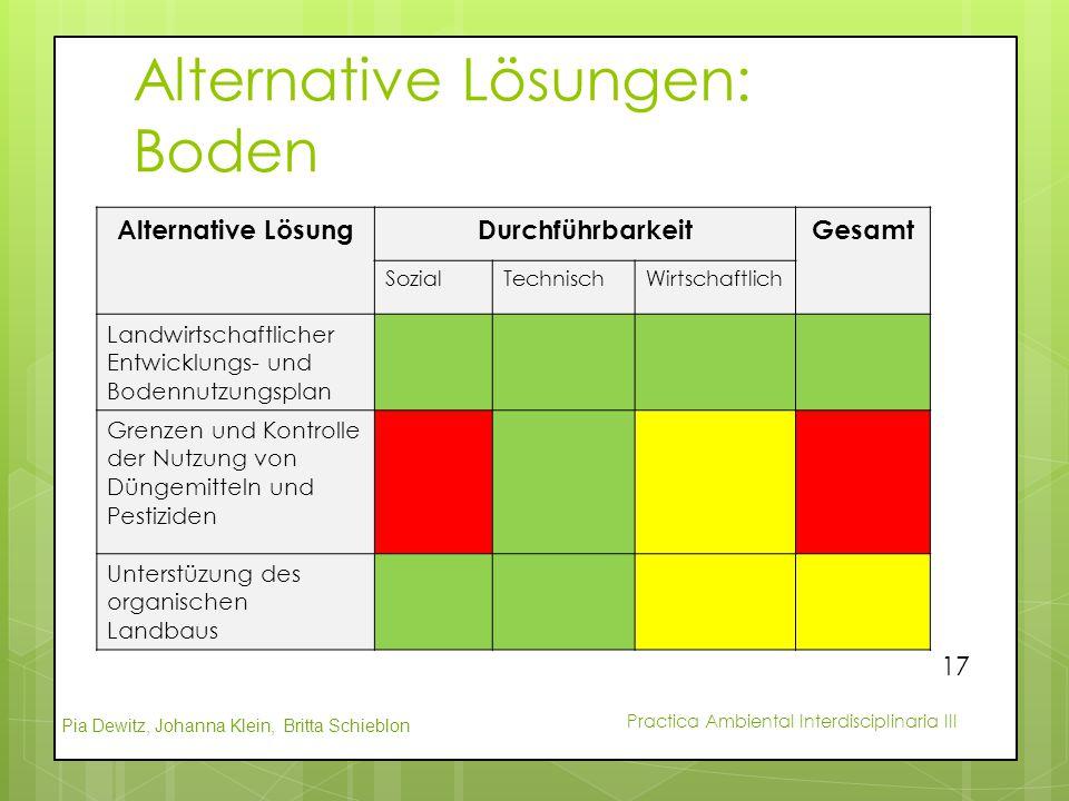 Pia Dewitz, Johanna Klein, Britta Schieblon Practica Ambiental Interdisciplinaria III Alternative Lösungen: Boden Alternative LösungDurchführbarkeitGe