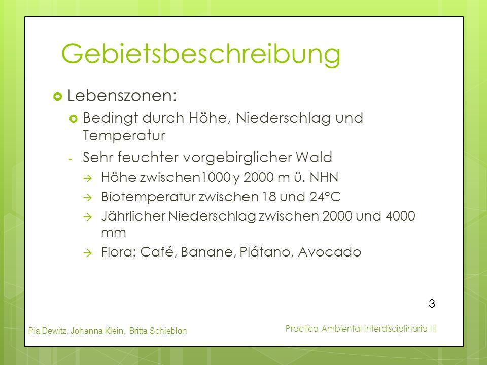 Pia Dewitz, Johanna Klein, Britta Schieblon Practica Ambiental Interdisciplinaria III Gebietsbeschreibung  Lebenszonen:  Bedingt durch Höhe, Nieders