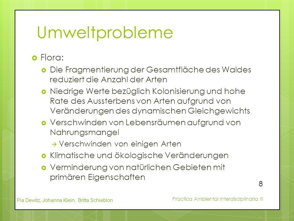 Pia Dewitz, Johanna Klein, Britta Schieblon Practica Ambiental Interdisciplinaria III Umweltprobleme  Flora:  Die Fragmentierung der Gesamtfläche de