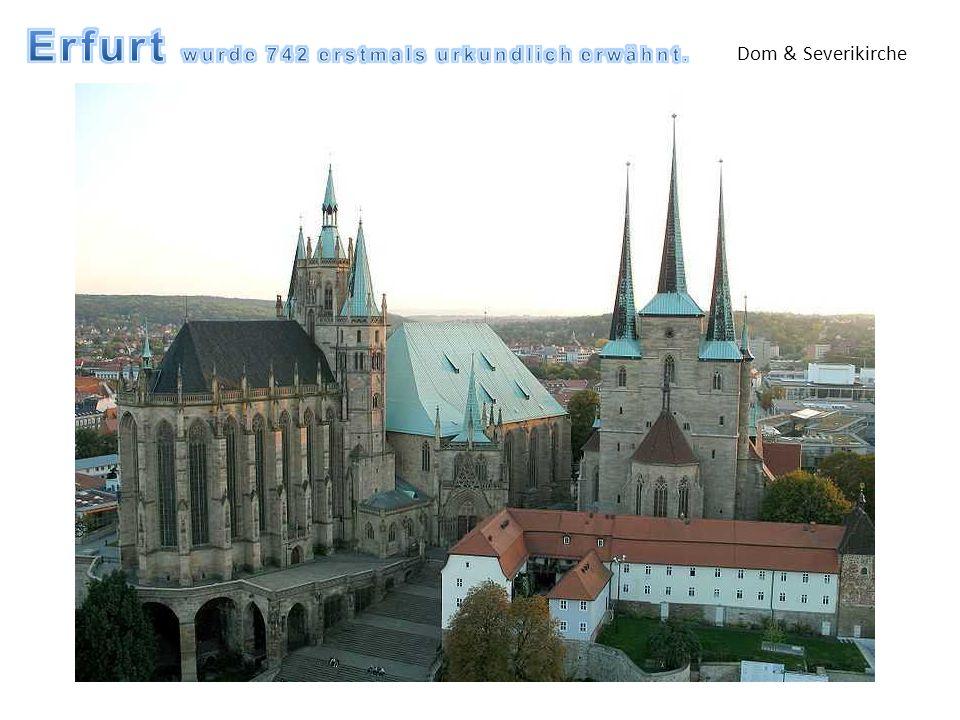 Dom & Severikirche