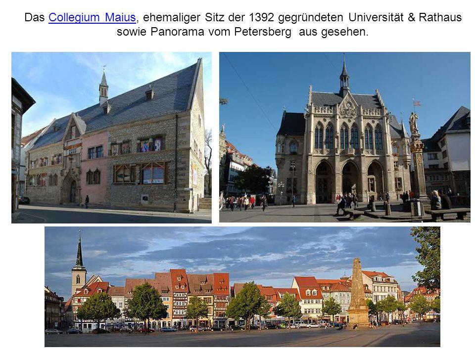 Das Collegium Maius, ehemaliger Sitz der 1392 gegründeten Universität & Rathaus sowie Panorama vom Petersberg aus gesehen.Collegium Maius