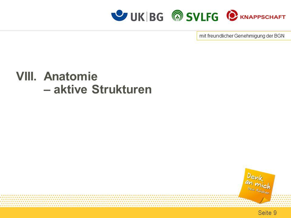 VIII.Anatomie – aktive Strukturen mit freundlicher Genehmigung der BGN Seite 9