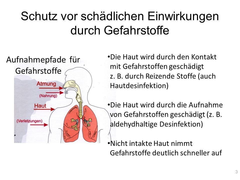 Schutz vor schädlichen Einwirkungen durch Gefahrstoffe Aufnahmepfade für Gefahrstoffe 3 Die Haut wird durch den Kontakt mit Gefahrstoffen geschädigt z