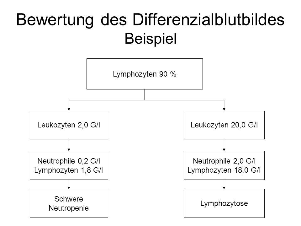 Bewertung des Differenzialblutbildes Beispiel Lymphozyten 90 % Leukozyten 2,0 G/lLeukozyten 20,0 G/l Neutrophile 2,0 G/l Lymphozyten 18,0 G/l Neutroph