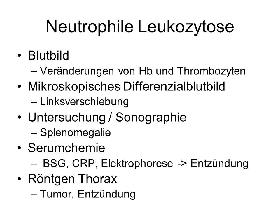 Neutrophile Leukozytose Blutbild –Veränderungen von Hb und Thrombozyten Mikroskopisches Differenzialblutbild –Linksverschiebung Untersuchung / Sonogra