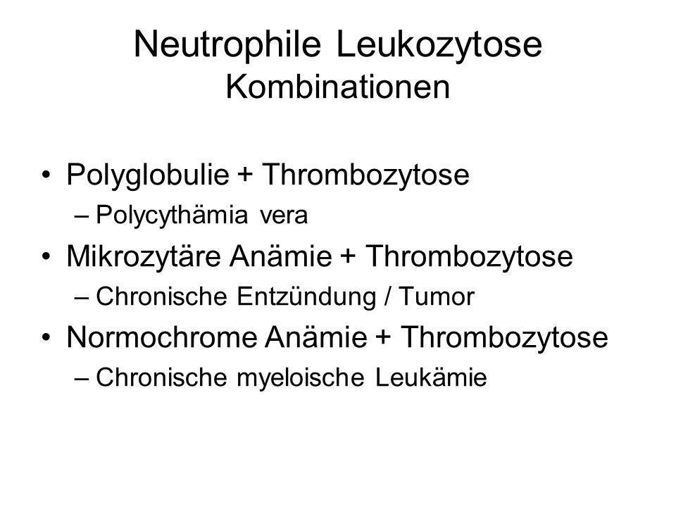 Neutrophile Leukozytose Kombinationen Polyglobulie + Thrombozytose –Polycythämia vera Mikrozytäre Anämie + Thrombozytose –Chronische Entzündung / Tumo