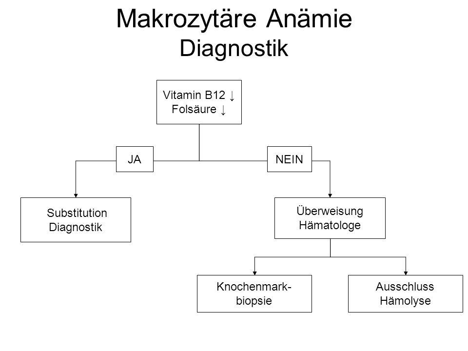 Makrozytäre Anämie Diagnostik Vitamin B12 ↓ Folsäure ↓ Überweisung Hämatologe Substitution Diagnostik Knochenmark- biopsie JANEIN Ausschluss Hämolyse