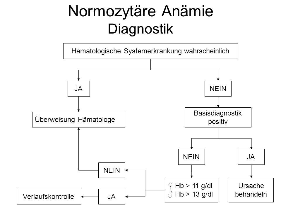 Normozytäre Anämie Diagnostik Hämatologische Systemerkrankung wahrscheinlich Basisdiagnostik positiv JANEIN Überweisung Hämatologe NEINJA ♀ Hb > 11 g/