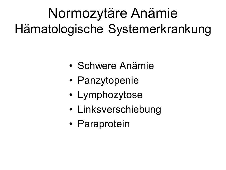 Normozytäre Anämie Hämatologische Systemerkrankung Schwere Anämie Panzytopenie Lymphozytose Linksverschiebung Paraprotein