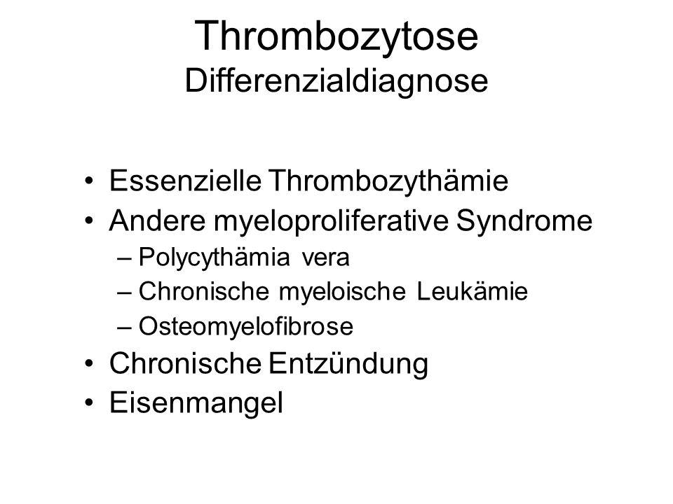 Thrombozytose Differenzialdiagnose Essenzielle Thrombozythämie Andere myeloproliferative Syndrome –Polycythämia vera –Chronische myeloische Leukämie –