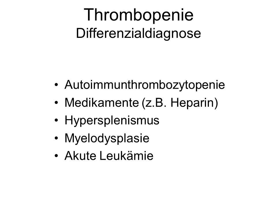 Thrombopenie Differenzialdiagnose Autoimmunthrombozytopenie Medikamente (z.B. Heparin) Hypersplenismus Myelodysplasie Akute Leukämie