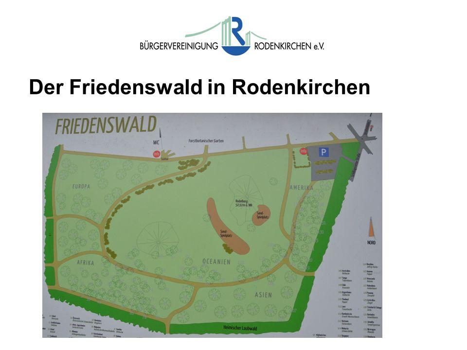 Der Friedenswald in Rodenkirchen