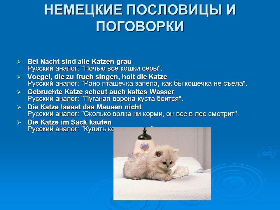 НЕМЕЦКИЕ ПОСЛОВИЦЫ И ПОГОВОРКИ  Bei Nacht sind alle Katzen grau Русский аналог: