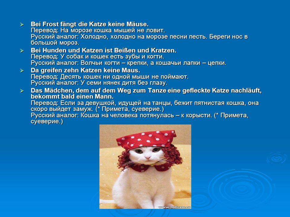 Bei Frost fängt die Katze keine Mäuse. Перевод: На морозе кошка мышей не ловит. Русский аналог: Холодно, холодно на морозе песни песть. Береги нос в