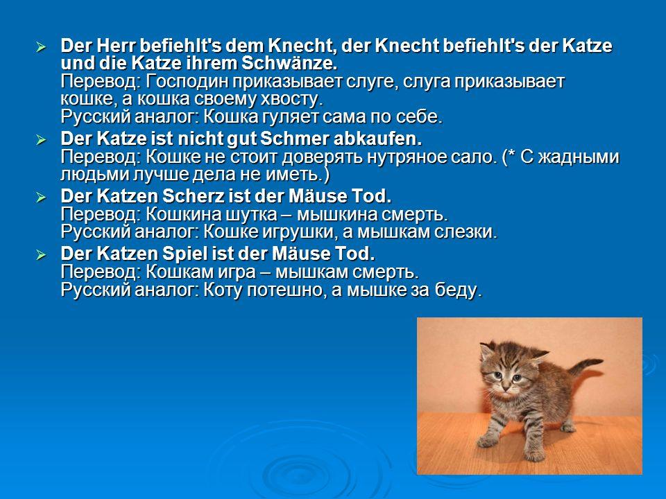  Der Herr befiehlt's dem Knecht, der Knecht befiehlt's der Katze und die Katze ihrem Schwänze. Перевод: Господин приказывает слуге, слуга приказывает