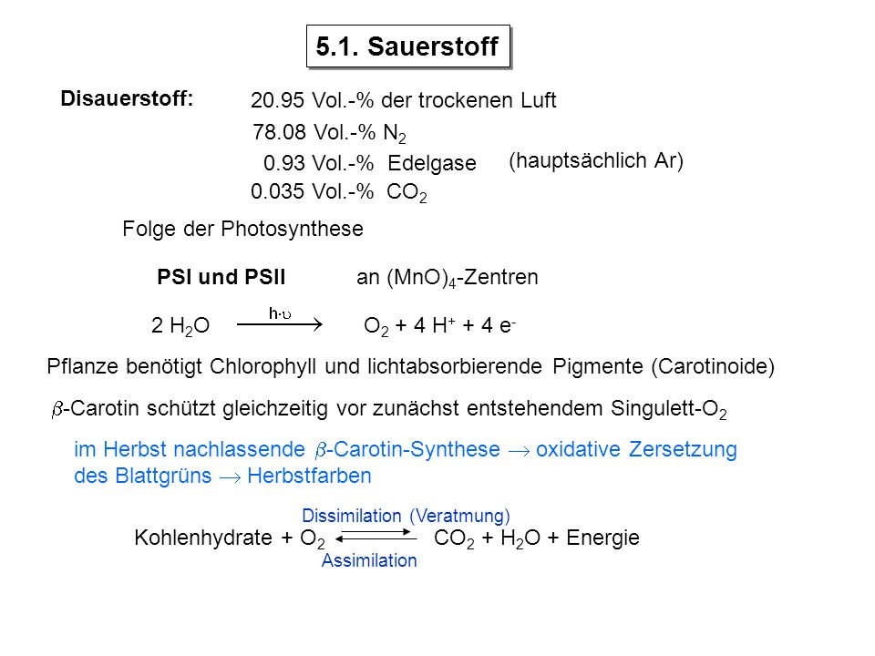 Disauerstoff: 20.95 Vol.-% der trockenen Luft 78.08 Vol.-% N 2 0.93 Vol.-% Edelgase 0.035 Vol.-% CO 2 Folge der Photosynthese PSI und PSII 2 H 2 OO 2