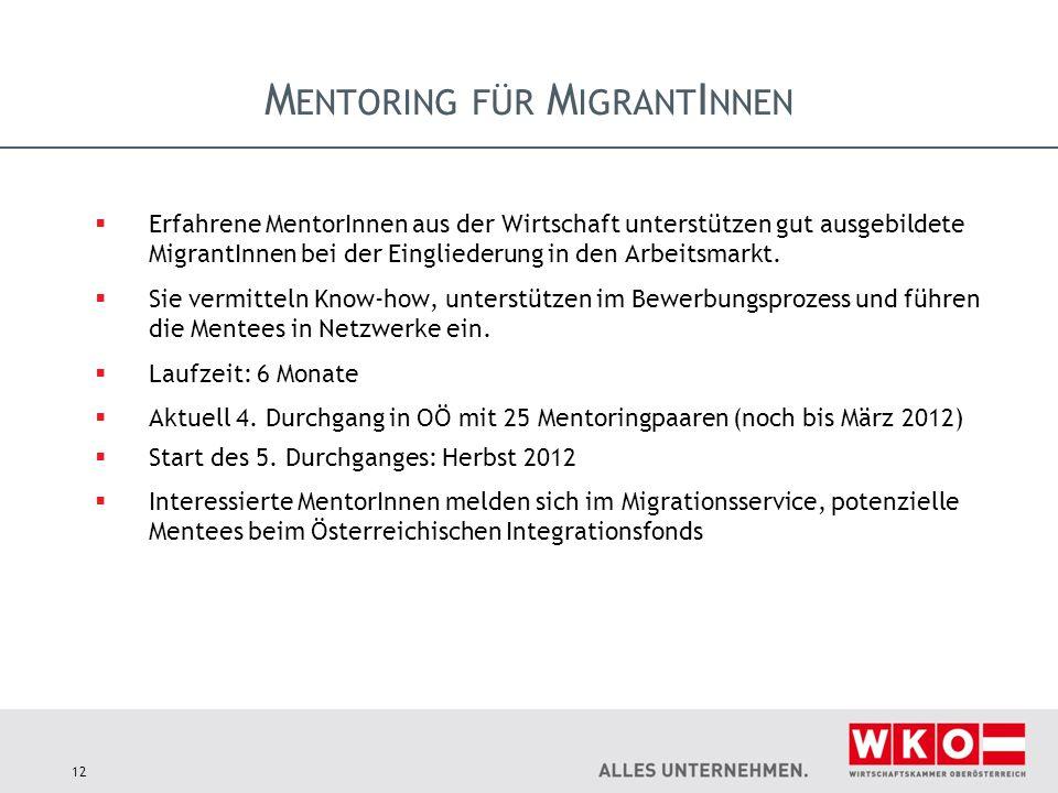 M ENTORING FÜR M IGRANT I NNEN  Erfahrene MentorInnen aus der Wirtschaft unterstützen gut ausgebildete MigrantInnen bei der Eingliederung in den Arbeitsmarkt.
