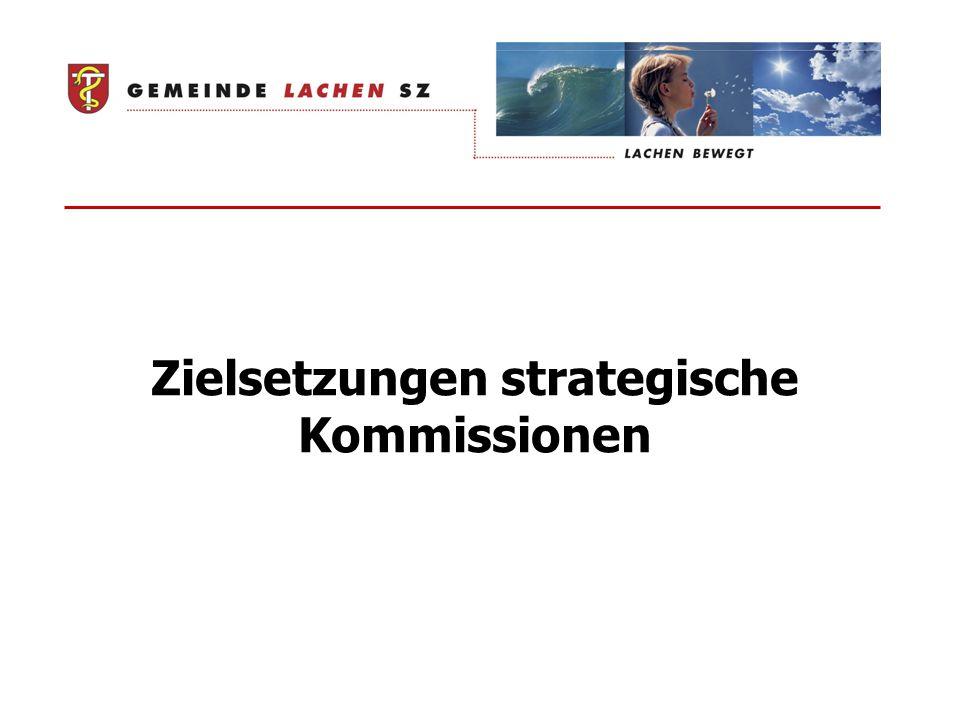 Zielsetzungen strategische Kommissionen