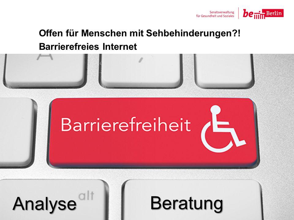 Offen für Menschen mit Sehbehinderungen?! Barrierefreies Internet 11 Analyse Beratung