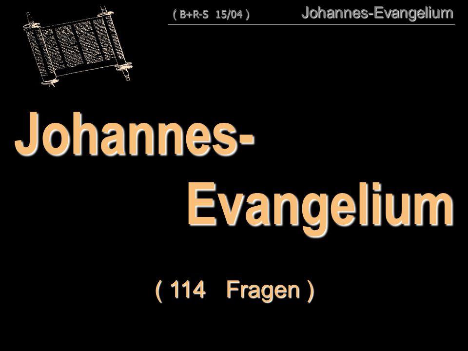 Johannes-Evangelium ( 114 Fragen ) ( B+R-S 15/04 ) Johannes-Evangelium ( B+R-S 15/04 ) Johannes-Evangelium
