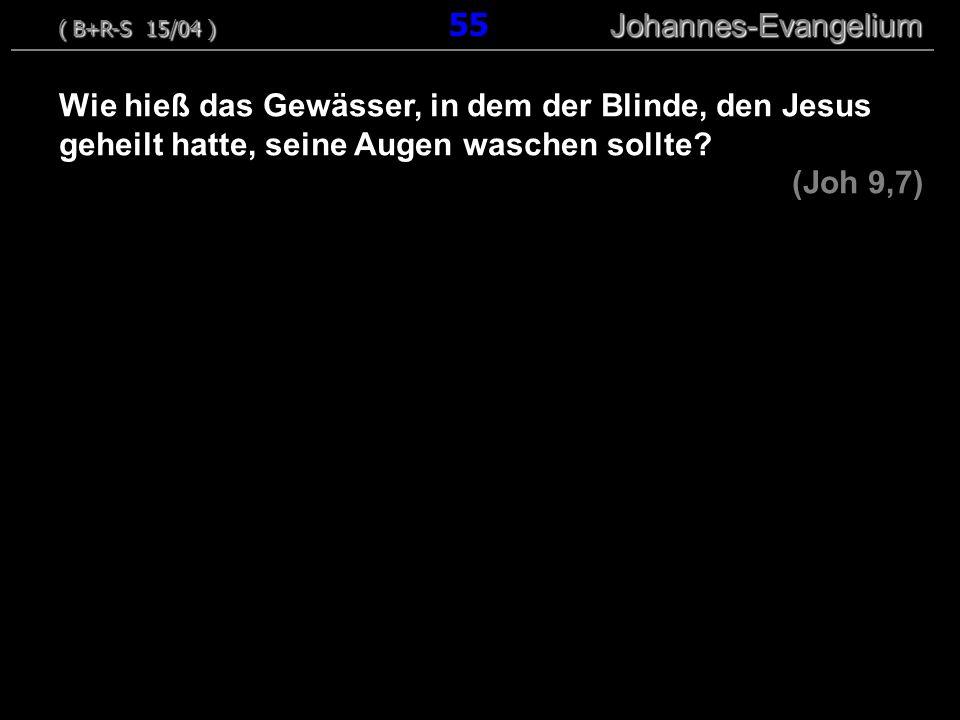 Wie hieß das Gewässer, in dem der Blinde, den Jesus geheilt hatte, seine Augen waschen sollte? (Joh 9,7) ( B+R-S 15/04 ) Johannes-Evangelium ( B+R-S 1