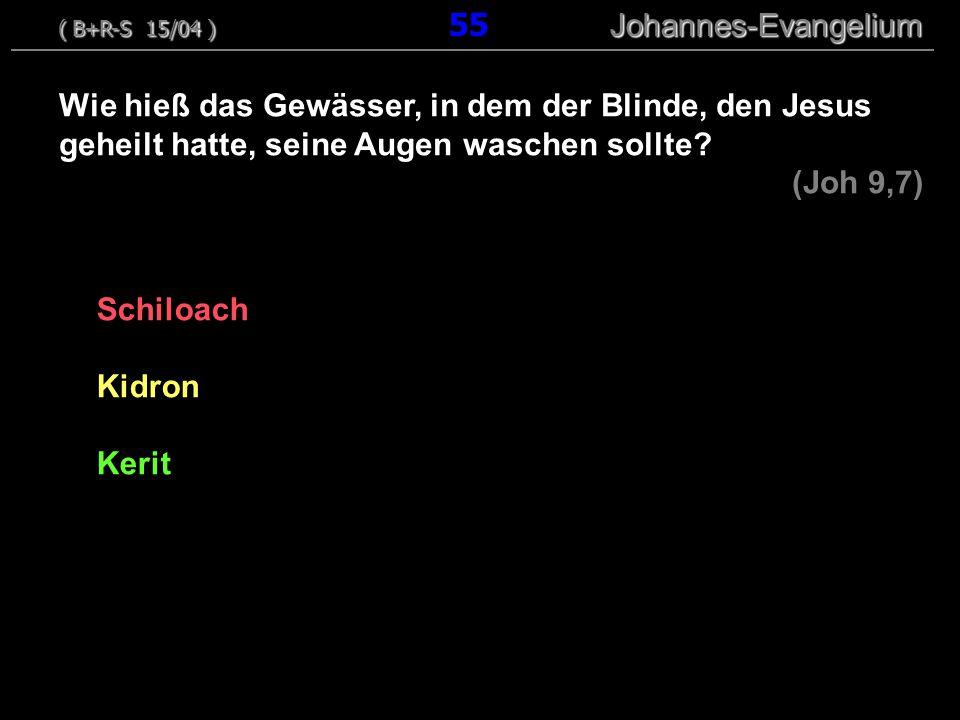 Schiloach Kidron Kerit Wie hieß das Gewässer, in dem der Blinde, den Jesus geheilt hatte, seine Augen waschen sollte? (Joh 9,7) ( B+R-S 15/04 ) Johann