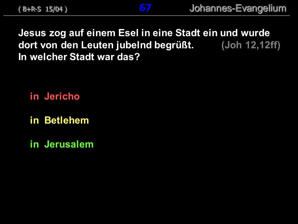 in Jericho in Betlehem in Jerusalem Jesus zog auf einem Esel in eine Stadt ein und wurde dort von den Leuten jubelnd begrüßt.