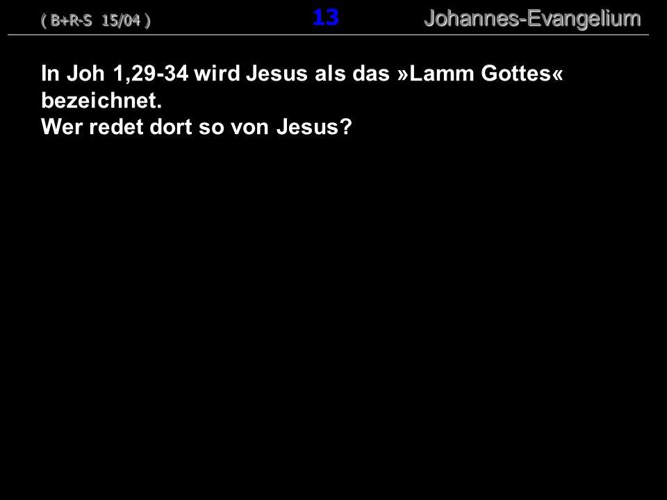 In Joh 1,29-34 wird Jesus als das »Lamm Gottes« bezeichnet. Wer redet dort so von Jesus? ( B+R-S 15/04 ) Johannes-Evangelium ( B+R-S 15/04 ) 13 Johann