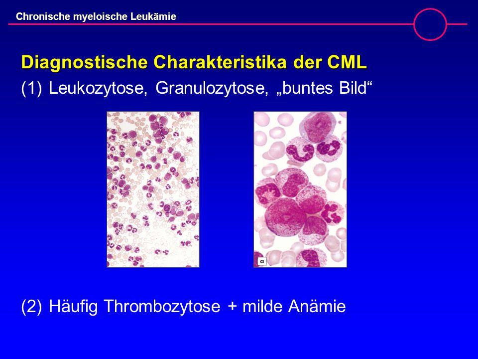 Chronische myeloische Leukämie Diagnostische Charakteristika der CML (3)Häufig Splenomegalie (4)Eosinophilie (5)Basophilie (6)Alkalische Leukozytenphosphatase  (7)Hyperplastisches Knochenmark (8)Philadelphia-Chromosom / BCR/ABL-Rearrangement