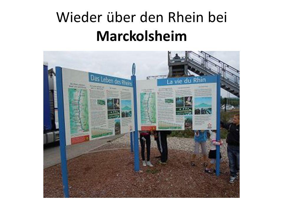 Wieder über den Rhein bei Marckolsheim