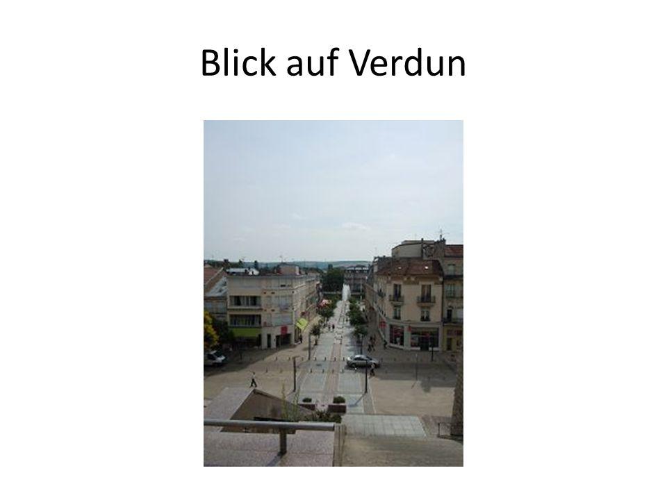 Blick auf Verdun