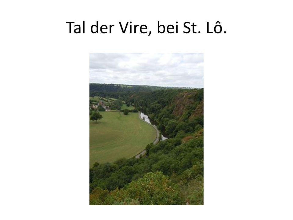 Tal der Vire, bei St. Lô.