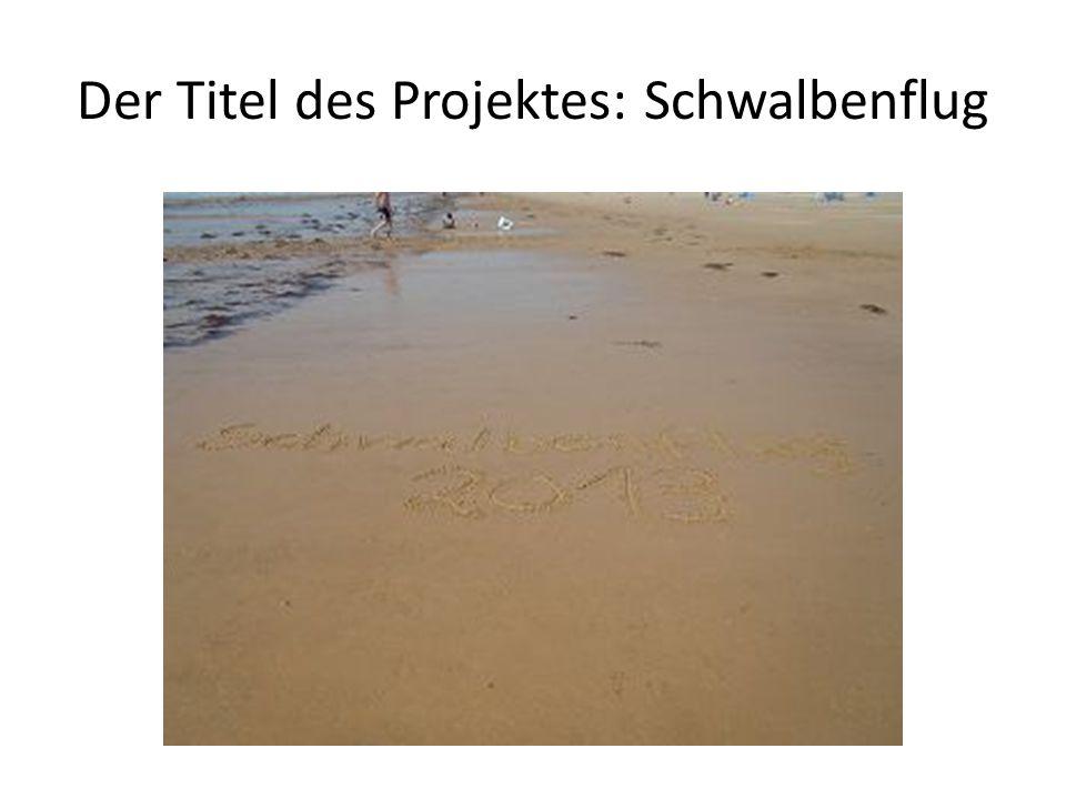 Der Titel des Projektes: Schwalbenflug