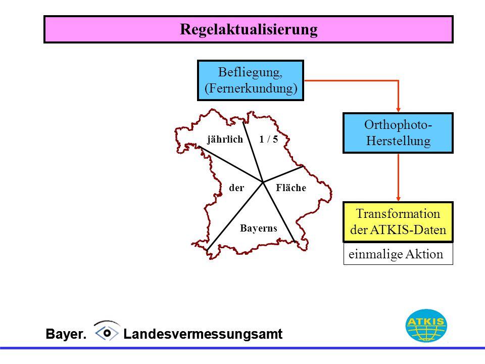 Bayer. Landesvermessungsamt jährlich1 / 5 derFläche Bayerns Befliegung, (Fernerkundung) Orthophoto- Herstellung Regelaktualisierung Transformation der