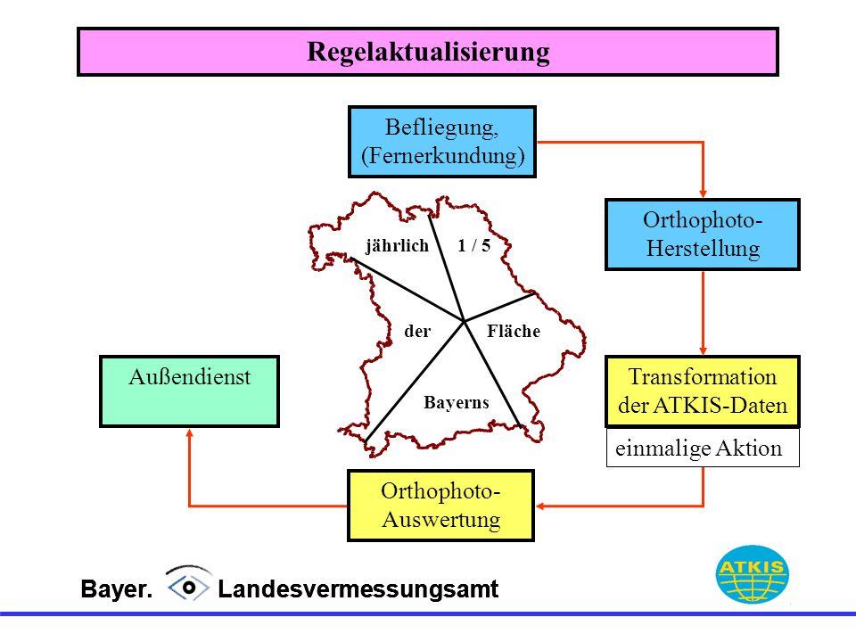 Bayer. Landesvermessungsamt Befliegung, (Fernerkundung) Orthophoto- Herstellung Transformation der ATKIS-Daten jährlich1 / 5 derFläche Bayerns Außendi