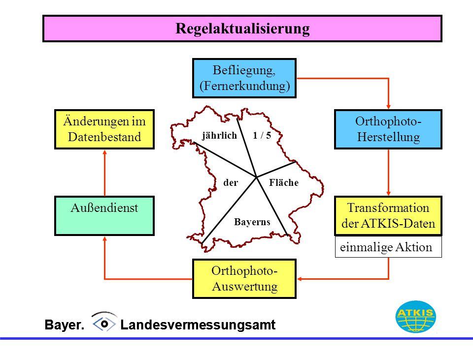 Bayer. Landesvermessungsamt Befliegung, (Fernerkundung) Orthophoto- Herstellung Transformation der ATKIS-Daten Orthophoto- Auswertung Außendienst jähr